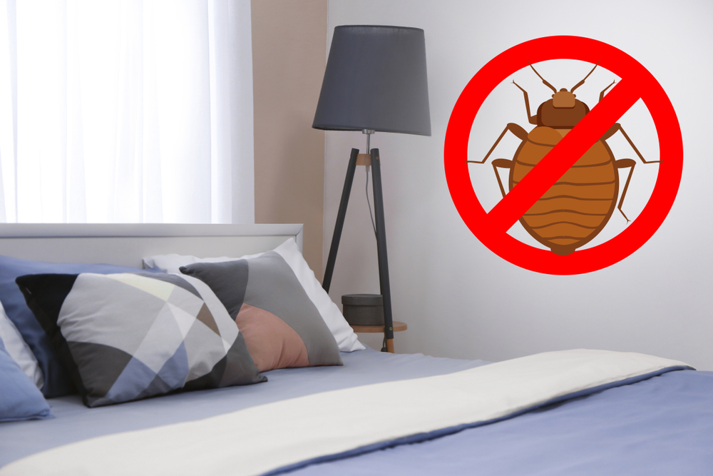 Kill Bed Bugs the Eco-Friendly Way-With a Biopesticide Treatment